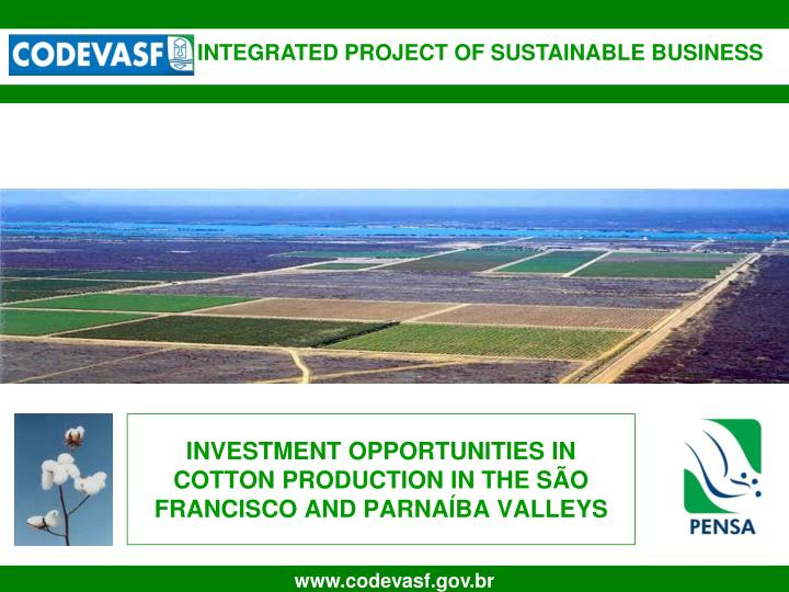 Investment opportunities in cotton production in the s o francisco and parna ba valleys l.jpg
