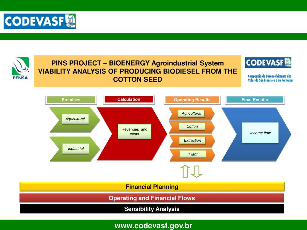 PINS PROJECT – BIOENERGY Agroindustrial System VIABILITY ANALYSIS OF PRODUCING BIODIESEL FROM THE COTTON SEED
