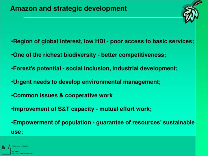 Amazon and strategic development