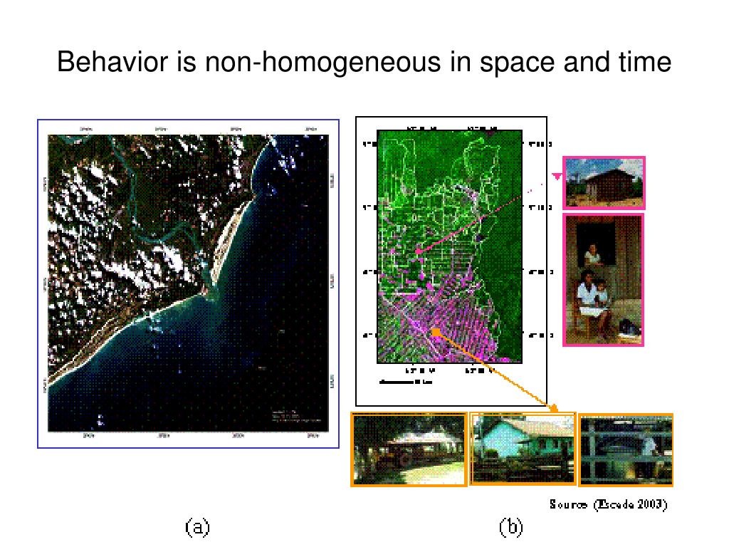 Behavior is non-homogeneous in space and time