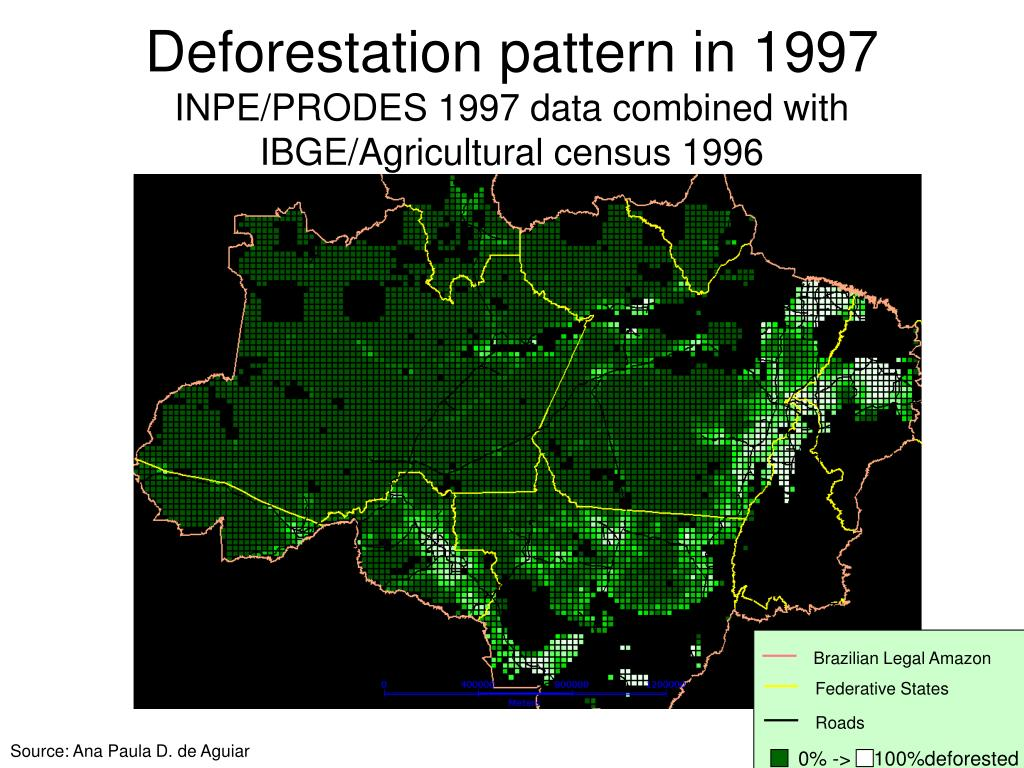 Deforestation pattern in 1997