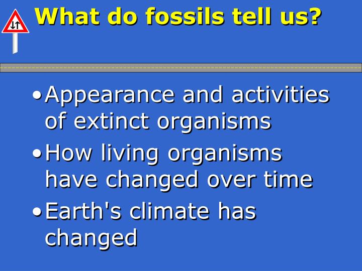 What do fossils tell us?