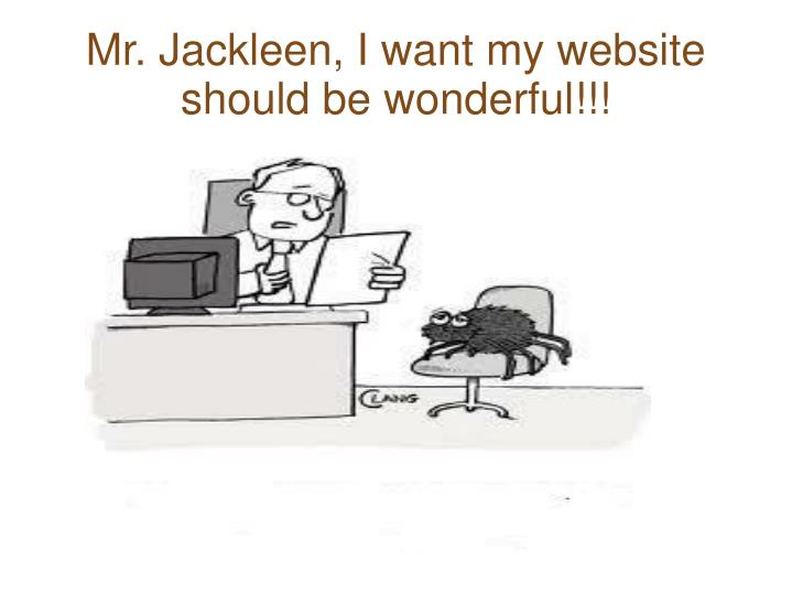 Mr jackleen i want my website should be wonderful