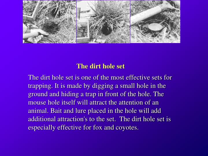 The dirt hole set