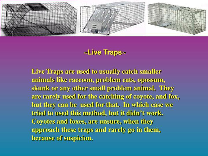 ~Live Traps~