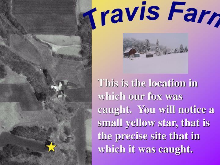 Travis Farm