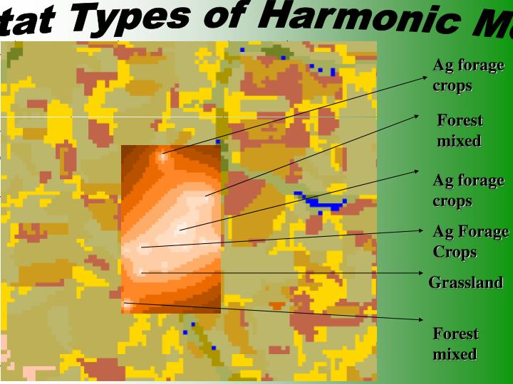 Habitat Types of Harmonic Mean