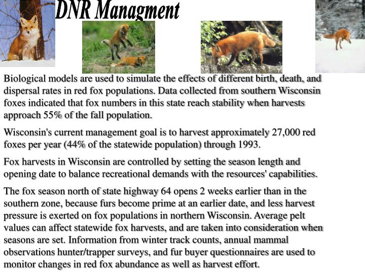 DNR Managment
