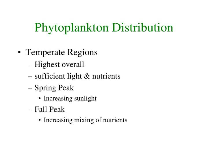 Phytoplankton Distribution