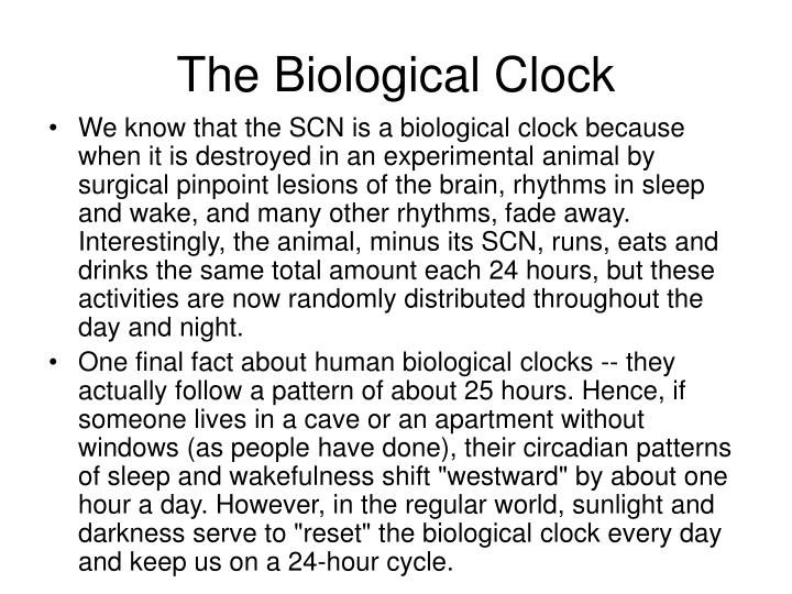 The Biological Clock