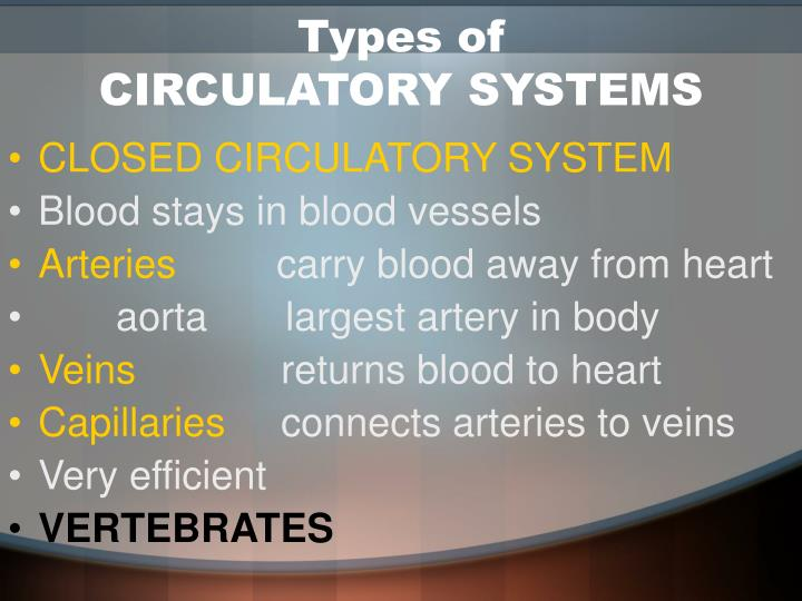 Types of circulatory systems1