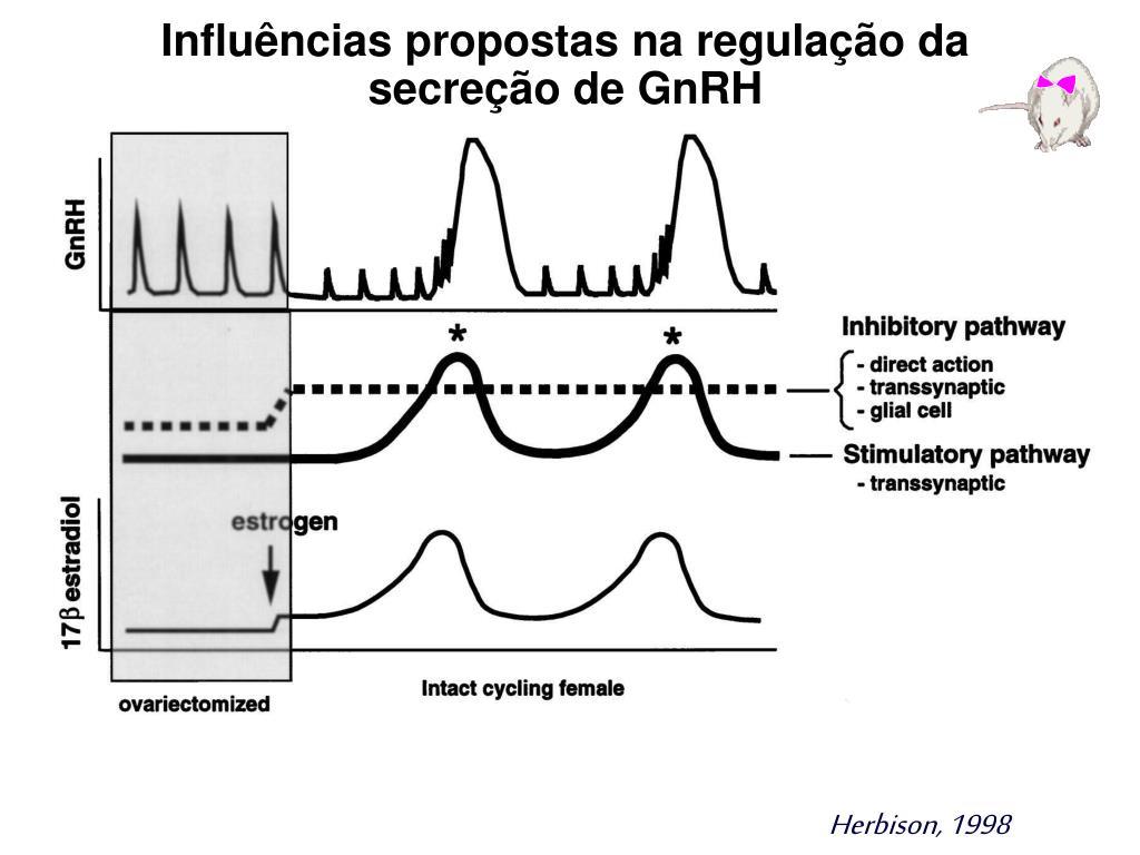 Influências propostas na regulação da