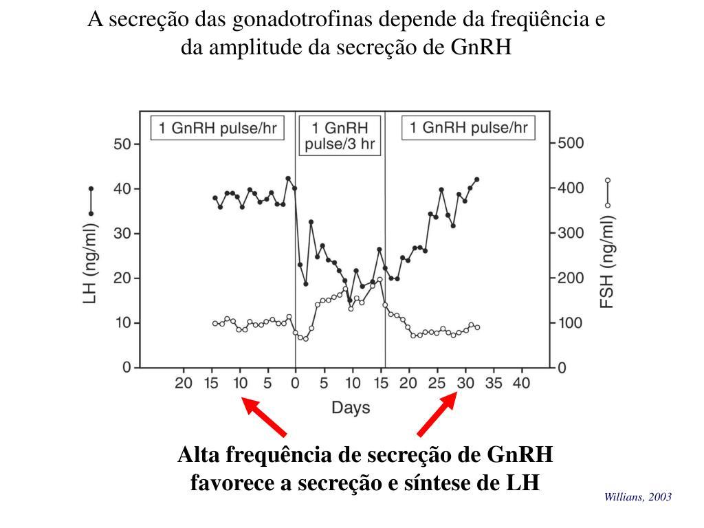 A secreção das gonadotrofinas depende da freqüência e da amplitude da secreção de GnRH