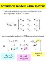 standard model ckm matrix