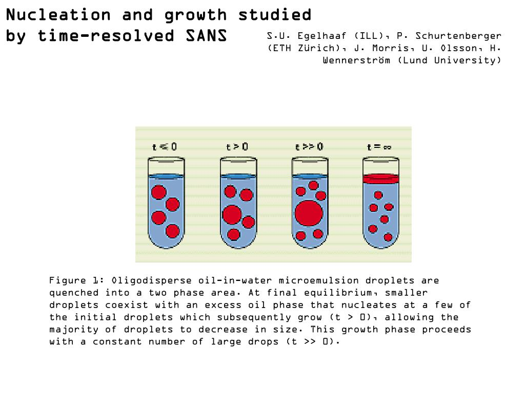 Nucleation and growth studied by time-resolved SANS