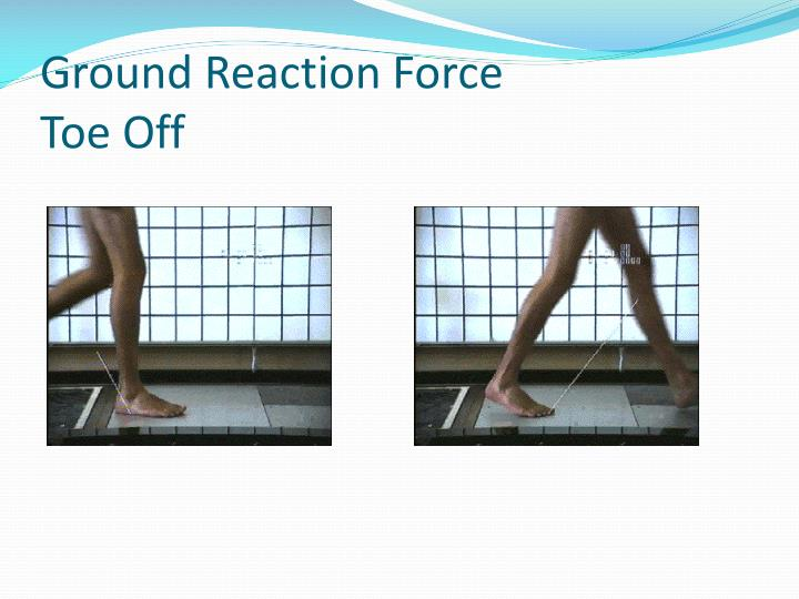 Ground Reaction Force