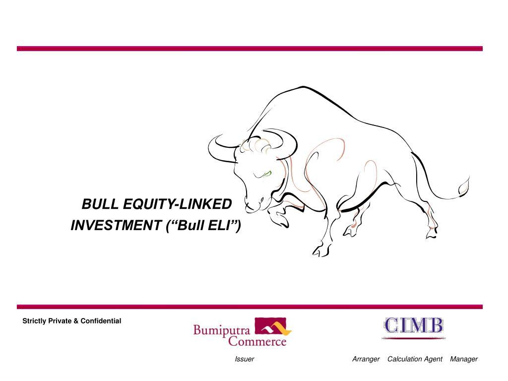 """BULL EQUITY-LINKED INVESTMENT (""""Bull ELI"""")"""
