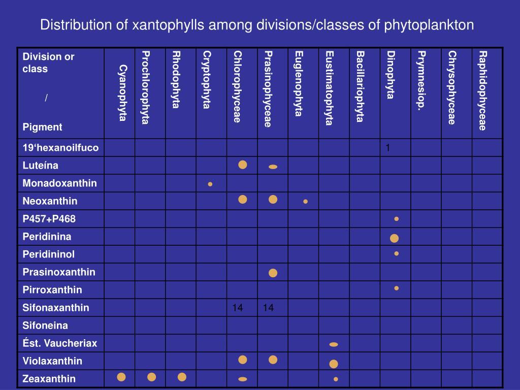 Distribution of xantophylls among
