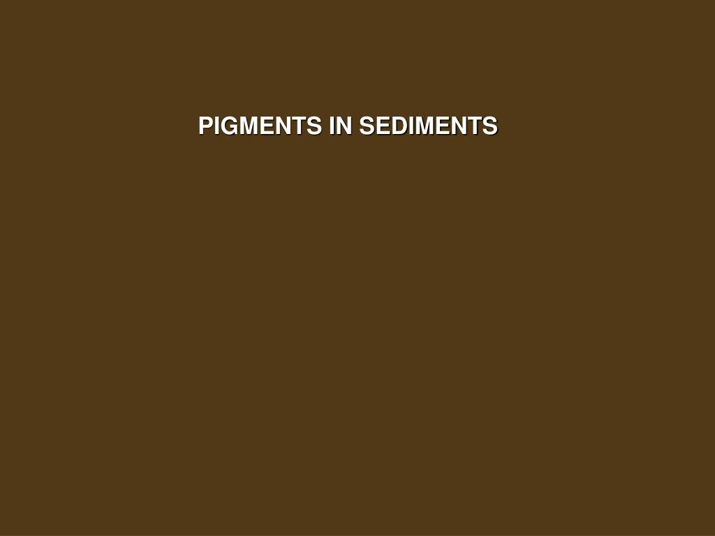 PIGMENTS IN SEDIMENTS