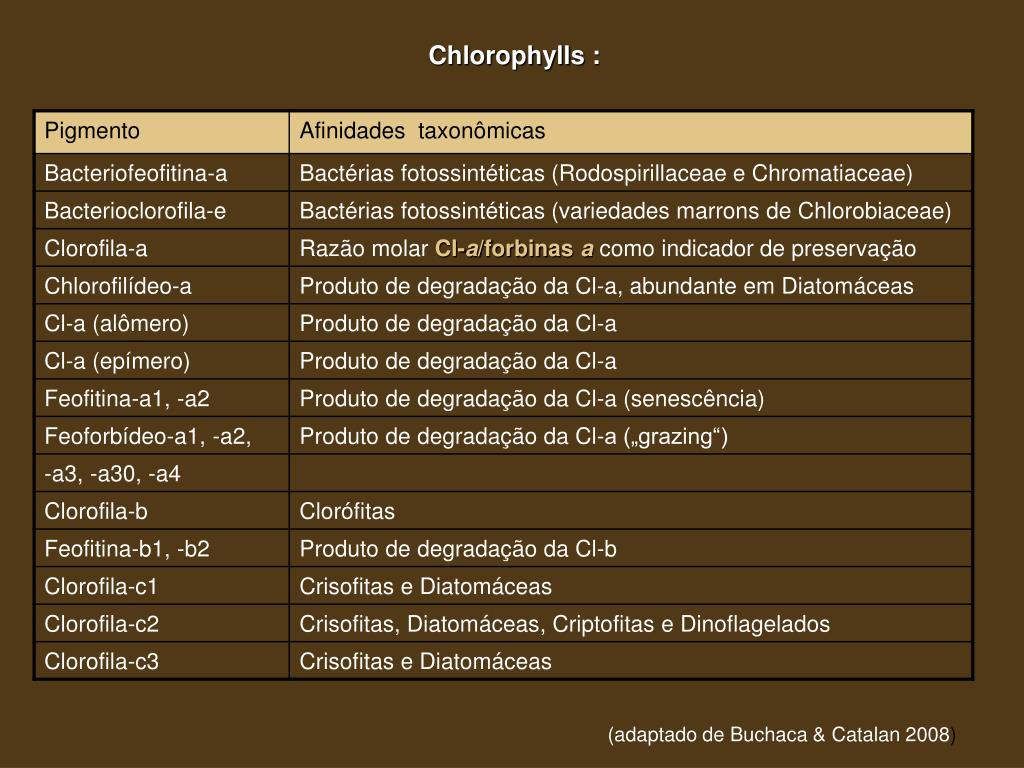 Chlorophylls :