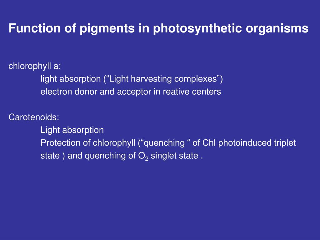 Function of pigments in photosynthetic organisms