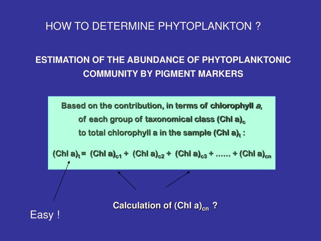 HOW TO DETERMINE PHYTOPLANKTON ?