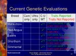 current genetic evaluations17