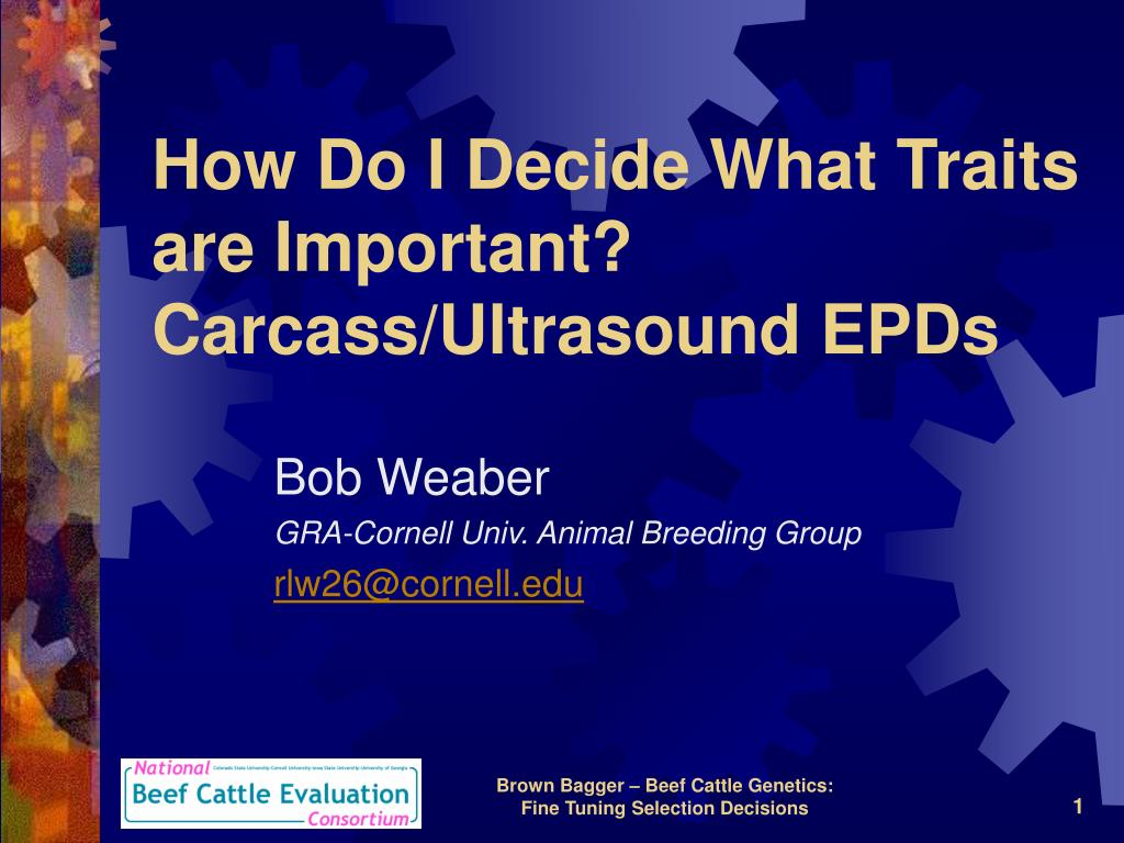 how do i decide what traits are important carcass ultrasound epds