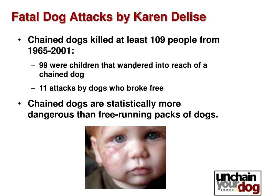 Fatal Dog Attacks by Karen Delise