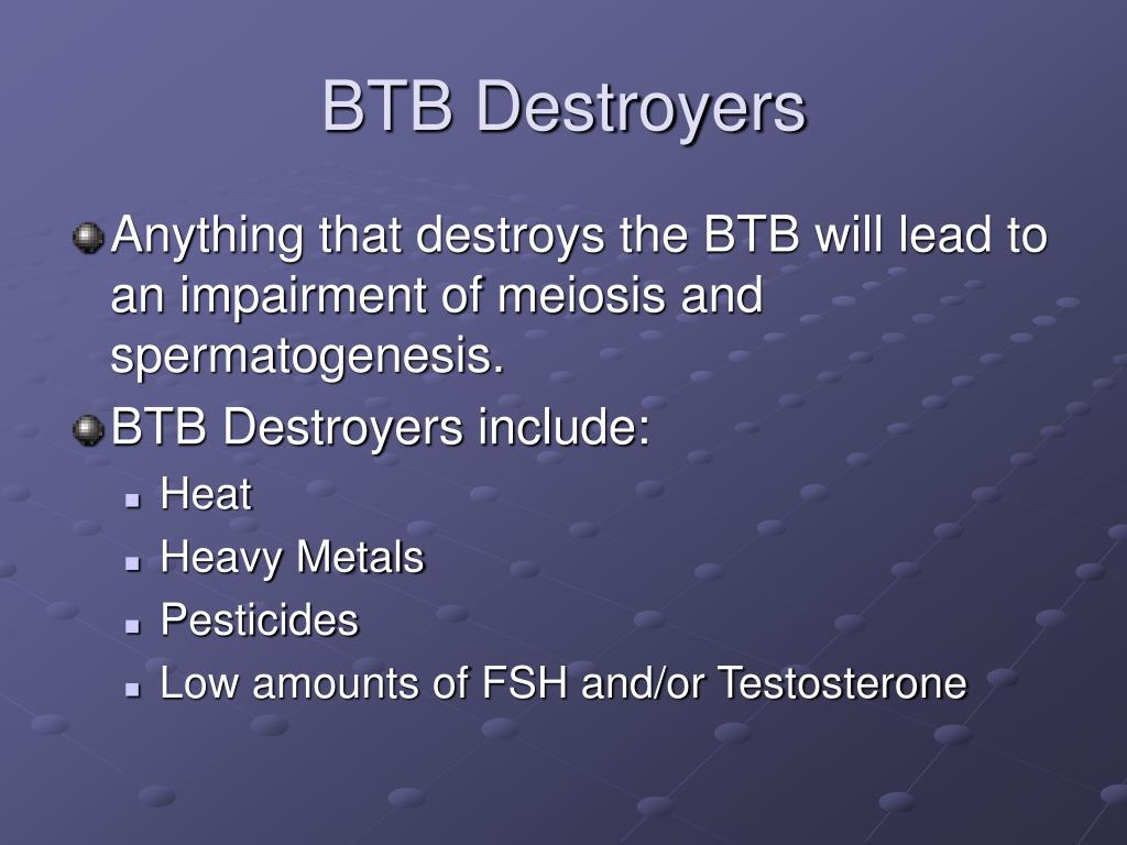 BTB Destroyers