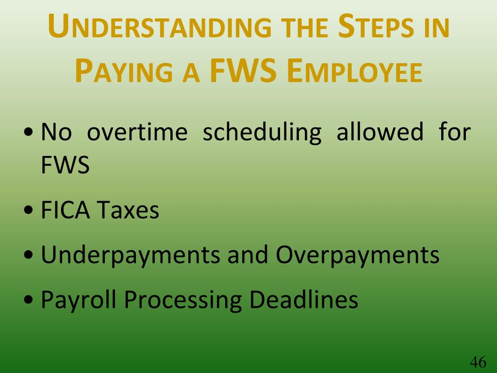 Understanding the Steps in Paying a FWS Employee