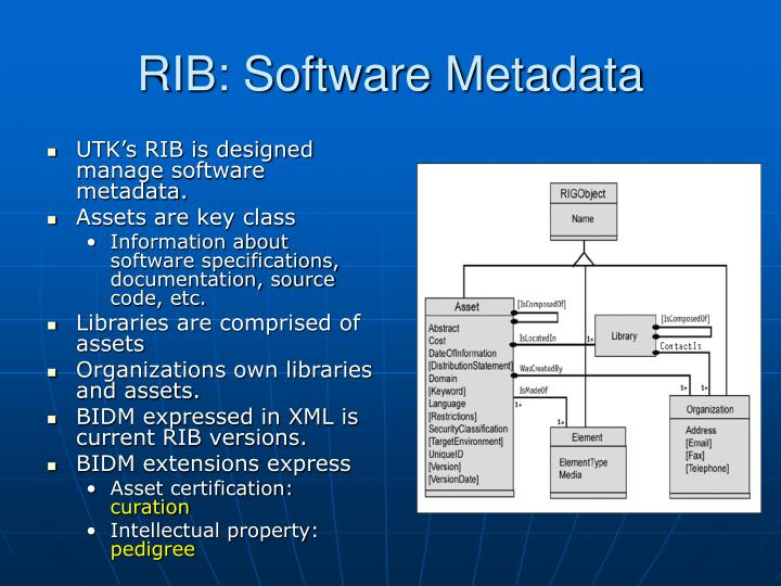 RIB: Software Metadata