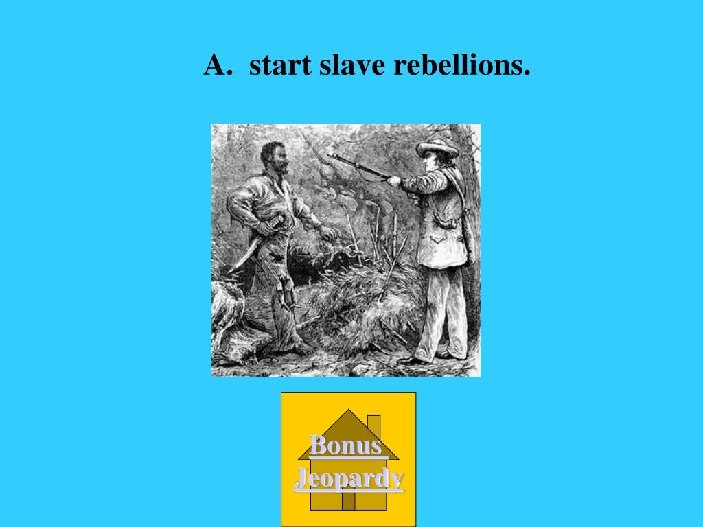 A.  start slave rebellions.