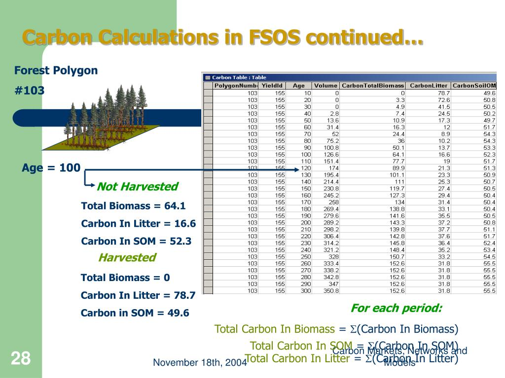 Carbon Calculations in FSOS continued…