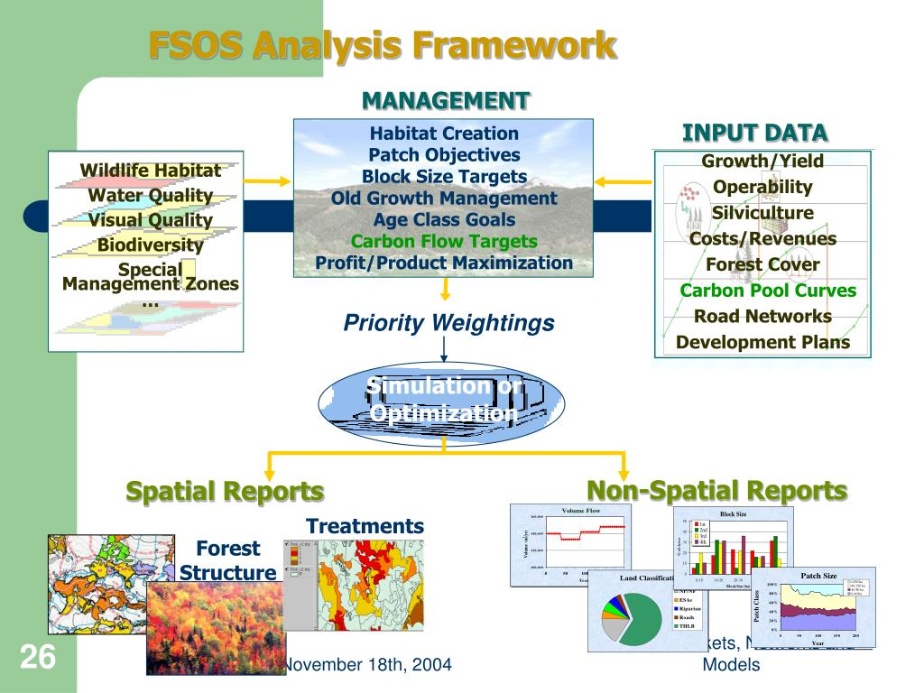 FSOS Analysis Framework