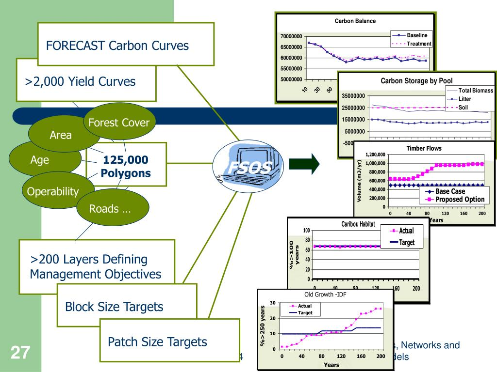 FORECAST Carbon Curves