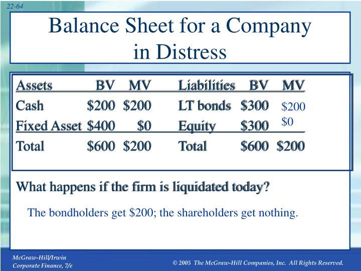 Balance Sheet for a Company