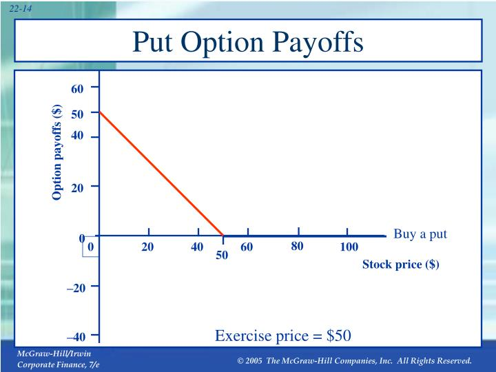Put Option Payoffs