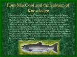 finn maccool and the salmon of knowledge