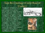 tain bo cuailnge cattle raid of cooley