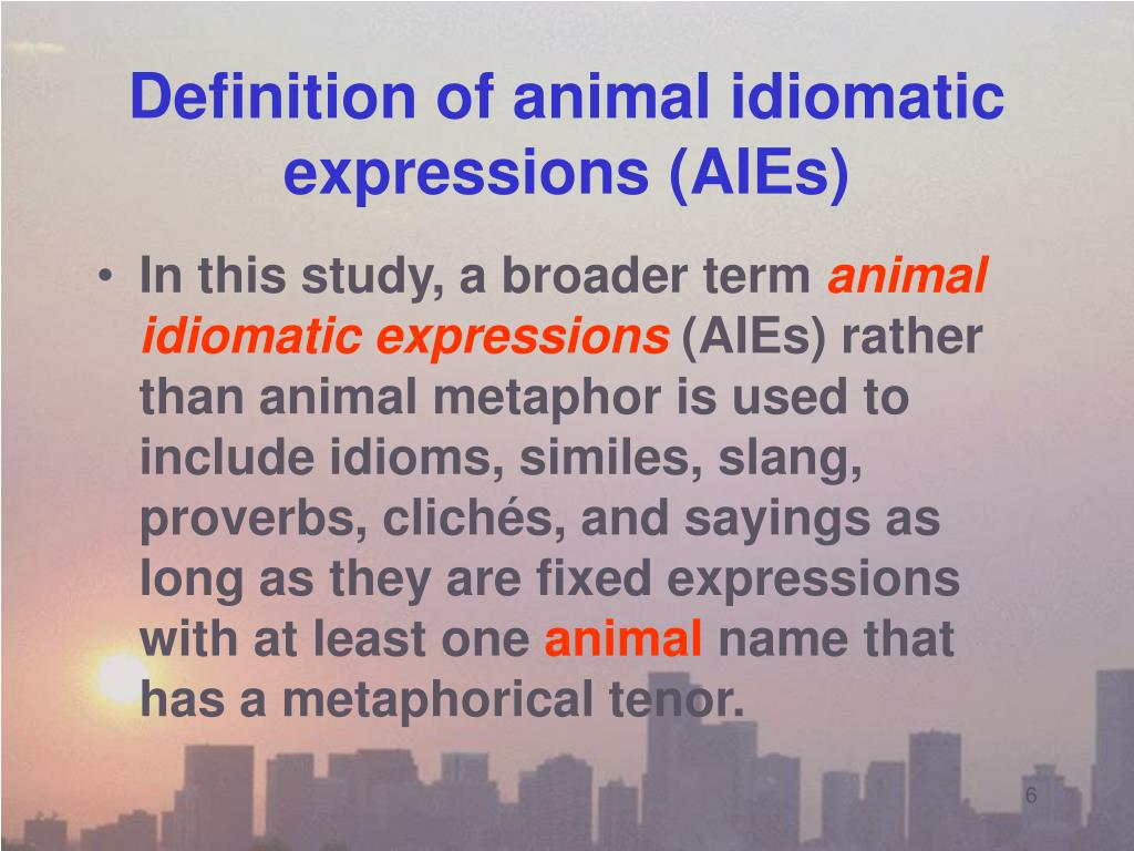 Definition of animal idiomatic expressions (AIEs)