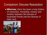 companion diocese resolution10