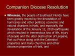 companion diocese resolution11