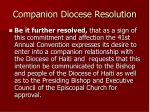 companion diocese resolution14