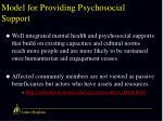 model for providing psychosocial support