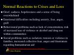 normal reactions to crises and loss