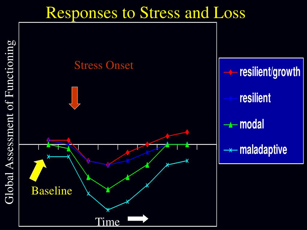 Responses to Stress and Loss