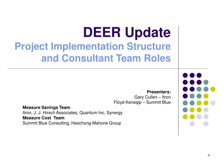 Deer update project implementation structure and consultant team roles l.jpg