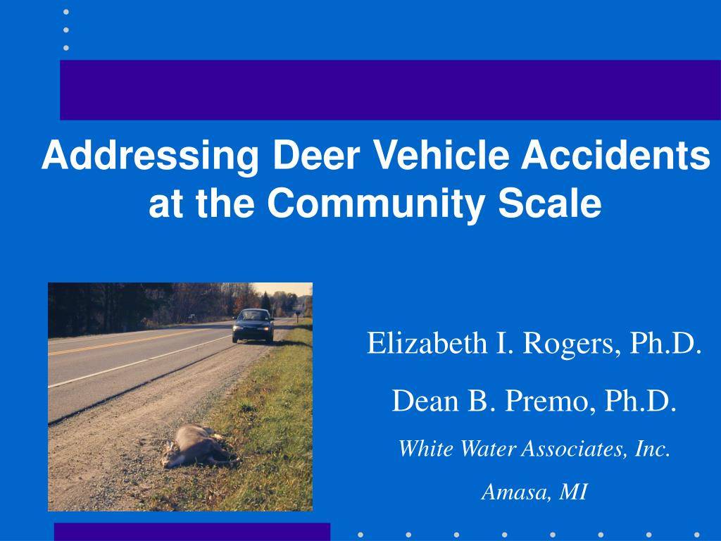 Addressing Deer Vehicle Accidents