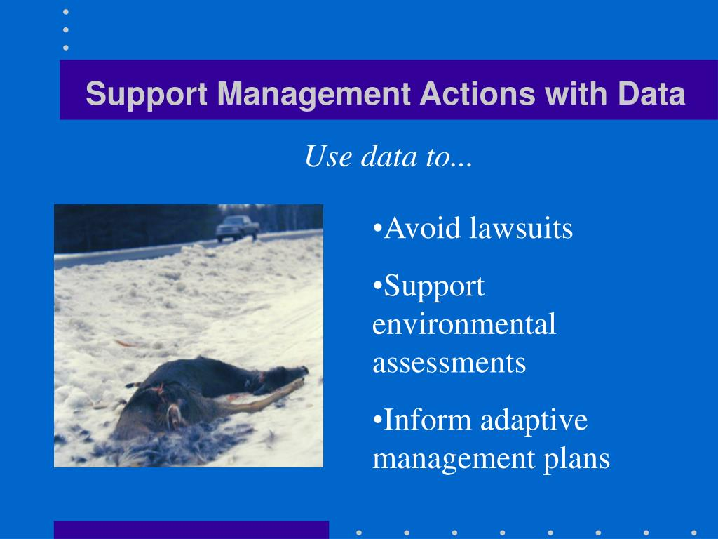 Support Management Actions with Data
